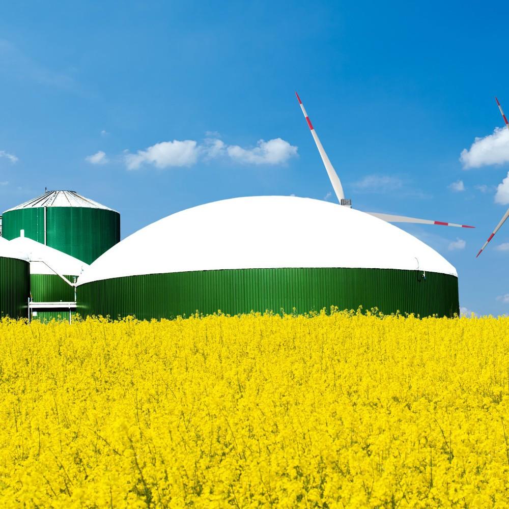 Biokohle in Biogasanlagen