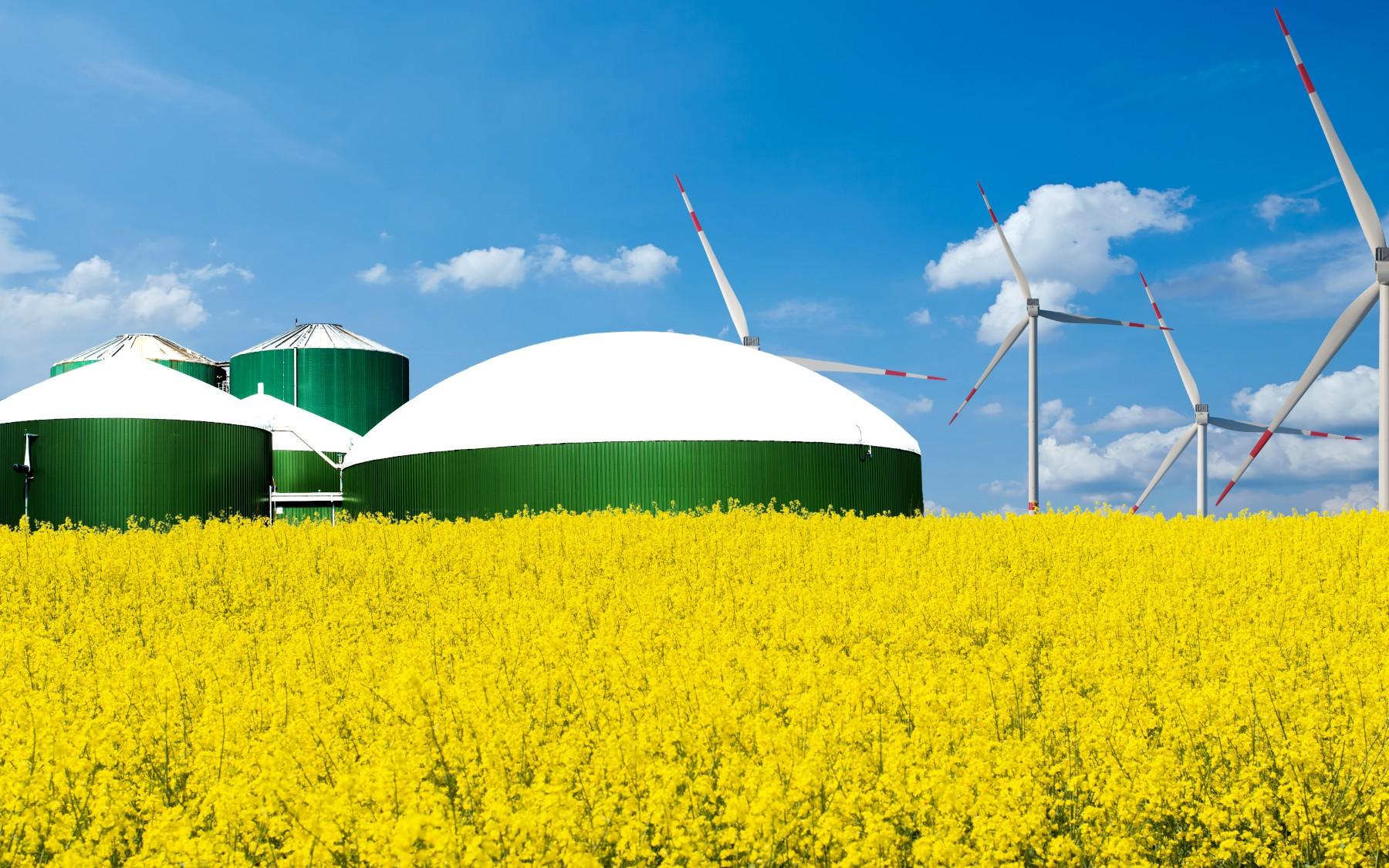 Pflanzenkohle in Biogasanlagen